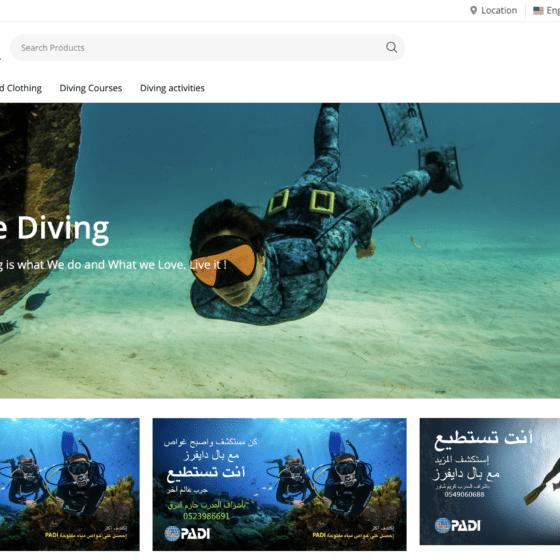 paldivers website screenshot